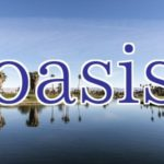 oasis『Whatever』 ノエルが学んだ自由とは